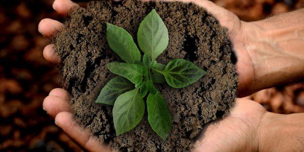 Reformas sostenibles: Ventajas y beneficios